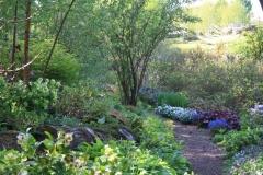 Transformed_David-Sutherland-Garden-141